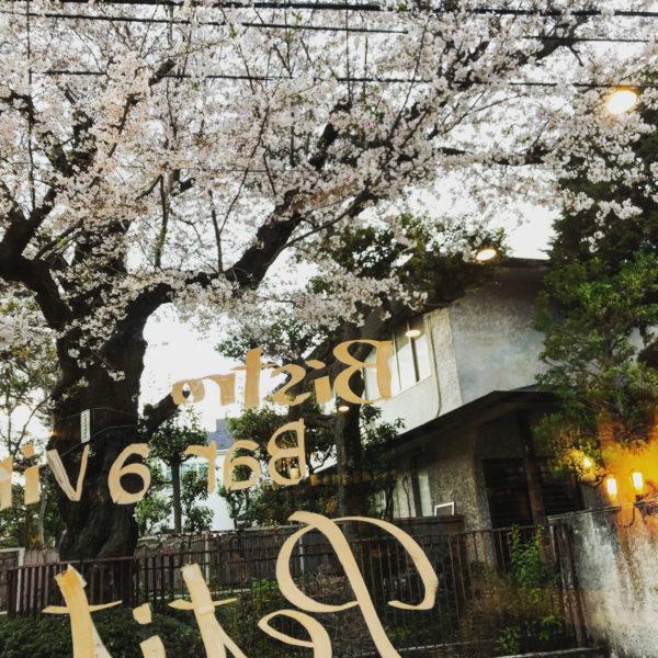 2020 3/31 臨時定休日(店内徹底清掃)